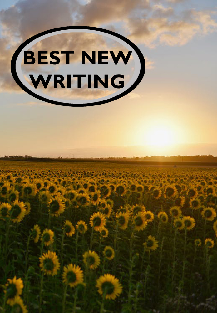 Best New Writing